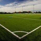 『人工芝の発癌リスクとがんになったサッカー選手たち』の画像