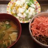 『すき屋の牛丼ミニ・とん汁サラダセット【株主優待】』の画像