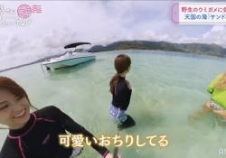 これはけしからんwww 白石麻衣×松村沙友理ハワイ旅「可愛いおちりしてる」wwwww