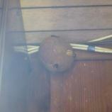 『軒裏にスズメバチの巣』の画像