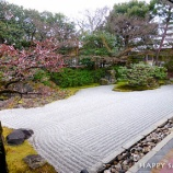 『京都旅行2017:圓徳院』の画像
