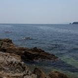 『好調 遠州サーフ ヒラメ マゴチ接岸』の画像
