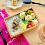 『息子のお弁当一週間・玉こんにゃくアザラシ~メンチカツ丼』の画像