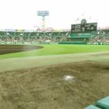 『野球の音』の画像