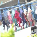 『【画像】隣の人妻、ブラジャーを大量に洗濯してしまうwwwwwwwwwwwwww』の画像