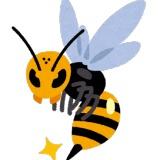 スズメバチとかいう世界で一番大きいハチが日本にいるという恐怖・・・
