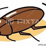 ゴキブリが現れたときの効率のいい捕まえ方wwww