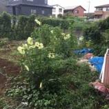 『明和の畑の草取りと整理』の画像