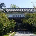 『岸和田に』の画像
