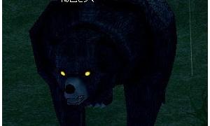 目が光っているヒグマ、光っていないクマ