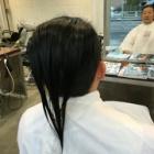 『断髪式』の画像