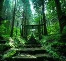もっとも素敵で神秘的な神社、ツイッターで拡散されてしまう