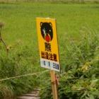 『北海道上陸』の画像
