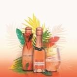 『【新商品】氷を入れて楽しむ新感覚スパークリングワイン「CHANDON PASSION」ミニボトル発売』の画像