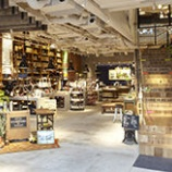 『東京都内(山手線沿線)で多肉植物に会えるお店。雑貨もいっしょに探そう。 【インテリアまとめ・インテリア雑貨 新宿 】』の画像