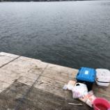 『蒲江の釣り筏にて』の画像