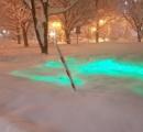イルミも車も埋もれてムードぶち壊しの「ドカ雪クリスマス」に札幌市民が絶望