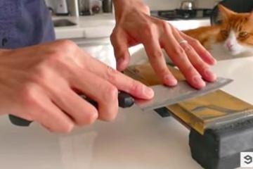 【ネコ萌え注意】日本の100円ショップの包丁の切れ味を披露するぜ → 海外「写り込んでるネコがやべぇえええwwwww」