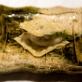 選りすぐりの日本食材が織りなす極上のイタリアンを 西麻布「ISSEI YUASA」 by 池田匡克
