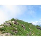 『谷川岳トレッキング、風景とお花を楽しめました!』の画像