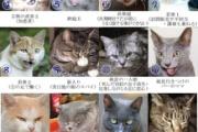 鈴木宗男の新党『大地・真民主党』のメンツがヤバイ