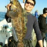『12月11日 釣果 ロックフィッシュ 総数は70超 アイナメ50センチ ベッコウ49センチ』の画像