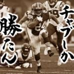 🐕 茶犬 🐕 NFLブログ