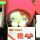 『キティ!キティ!』の画像