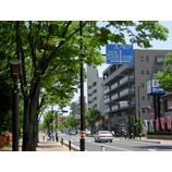 『戸田市が景観行政団体に』の画像