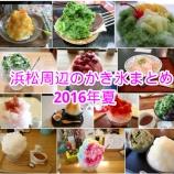 『2016年夏!はまつーで追った浜松周辺の「かき氷」を一挙にまとめてみるよー!』の画像