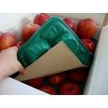 『【貰い物紹介】福島のりんご』の画像