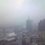 『雨に煙る』の画像