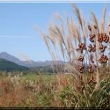 『駒ヶ岳』の画像