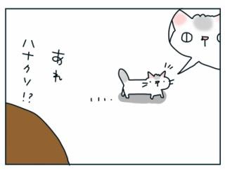 なにかと和みをくれる猫