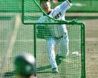 【阪神】高橋遥、順調回復アピール 平田2軍監督「球の力は見ていて迫力ある」