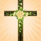 『人は何かの結果を強調するけれど、神の栄光を云う事を忘れてはならないのでは!?』の画像