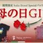 期間限定【母の日】スペシャルパッケージ!