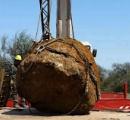 【画像】アルゼンチンにありえないデカさの隕石