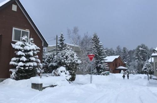 ワイの近所、雪でビューティフルになったから見てくれやのサムネイル画像