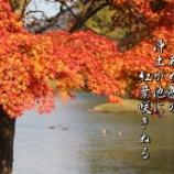 『浄土が池のもみじ』の画像