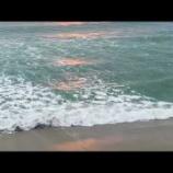 『朝の海辺から』の画像