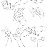 『ベクター素材 手05 二人の手・両手』の画像