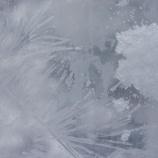 『アラベスク』の画像