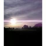 『朝靄の中で』の画像