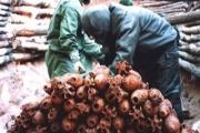 旧日本軍が遺棄した化学兵器の処理再延長=日中が基本合意、野田首相表明へ