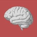 脳の処理速度が遅すぎる人wwwww