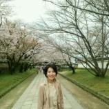 『京都・醍醐寺で花見』の画像