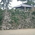 『【鈴鹿市】神戸城跡と龍光寺を家族で歴史散策』の画像