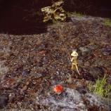 『釣りSSまとめその1 - Screenshots of fishing No.1』の画像