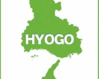 【悲報】兵庫県でカメムシ大量発生「過去にないほどの数」